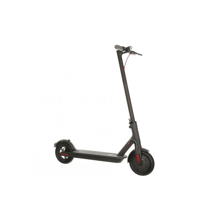 Segway solid tire