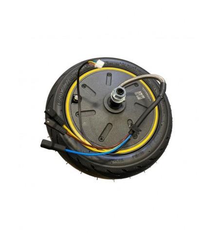 Segway motor 250W